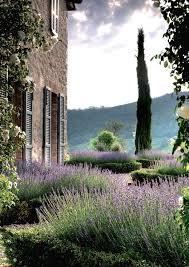 Mediterranean Garden Design Cool Mediterranean Garden So Lovely More Landscape Pinterest