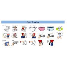 Toilet Chart For Toddlers Night Time Waterproof Potty Training Pants Potty Training