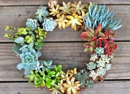 succulent wreath on live succulent wall art with garden trend we love make living wall art with succulents organic