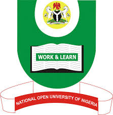 Image result for nigeria prison logo