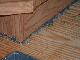 in older mobile homes the carpet needs to be cut out from underneath the walls so