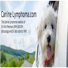 Dog Bone Cancer Life Expectancy Bone Cancer In Dogs Symptoms And