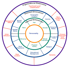 cultural competence diversity and inclusion initiative can dimensions of diversity