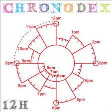 24 Hr Pie Chart Www Bedowntowndaytona Com