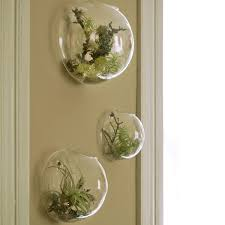 Small Picture Best Glass Wall Vase Wholesale to Buy Buy New Glass Wall Vase