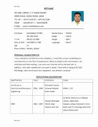 Resume Templates For Experienced Software Professionals Elegant