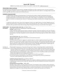 General Contractor Resume Sample Independent Contractor Resume