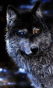 Angry Wolf Wallpapers 4K iPhone #Angry ...