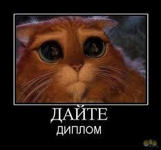 Статусы про диплом прикольные Лучшее для Одноклассников и  Рейтинг