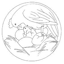 Mandala Kip Met Kuiken Kleurplaat Jouwkleurplaten