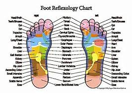 Reflexology Chart Top Of Foot Foot Online Charts Collection