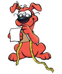 Julius K9 Size Chart Dog Harness Muzzle Size Chart Dog Training Equipment