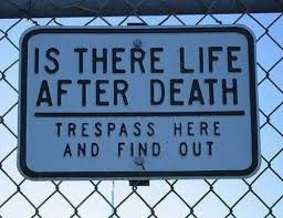 Life After Death Quotes Enchanting Life After Death Funny Pictures Quotes Pics Photos Images