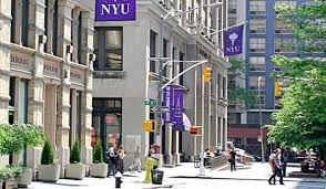 how to write the new york university essays