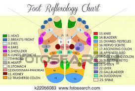 Foot Chart Foot Reflexology Chart Drawing K22056083 Fotosearch