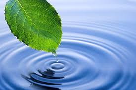 Реферат на тему Экологически чистое производство скачать бесплатно Экологически чистое производство реферат по экологии