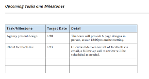 Project Status Report Template And Status Report Examples