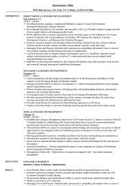 Category Development Manager Sample Resume Category Development Resume Samples Velvet Jobs 22