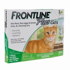monthly flea treatment frontline plus for cats