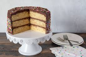 The Best Classic Yellow Birthday Cake With Chocolate Frosting