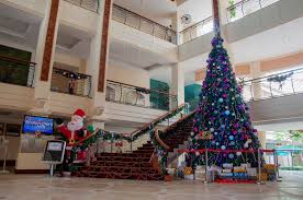 christmas decoration service in