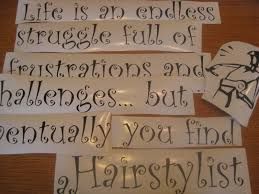 Life Is An Endless Struggle Full Of Frustrations And Challenges