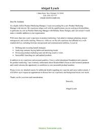 Valuable Hospital Manager Resume Professional Practice Manager