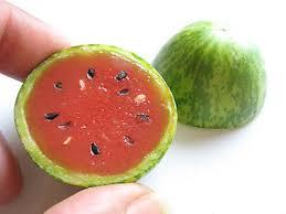 Resultado de imagen de miniwatermelon