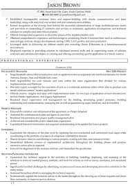 Sample Resume Director Of Information Technology College