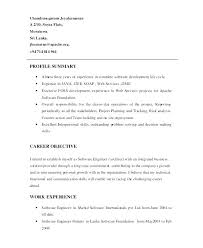Resume Summary Samples Professional Resume Summary Examples For