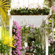 botanical garden orchids entrance