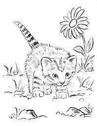 kittens coloring pages to print kitten coloring pages printable