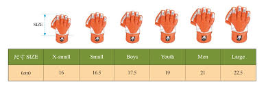 Cricket Taiwan Gloves Size Guide