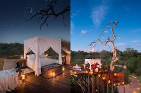 Spectacular Lion Sands Treehouses Let You Sleep Under The Starry Treehouse Hotel Africa