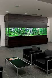 Wooden Big Aquarium In Office