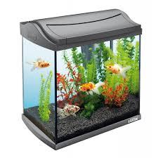 Fish Tank Fish Tank Aqueon Betta Falls Aquarium Kit In White Fish Aquariums