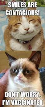 grumpy cat smiling is contagious. Simple Contagious Chemistry Cat  Intended Grumpy Smiling Is Contagious Pinterest