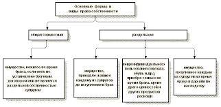Право общей совместной собственности супругов Законный и  Право общей совместной собственности супругов