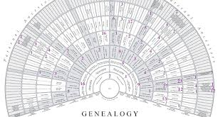 My Fan Chart 2018 My Year Of Dna Research Gendetective
