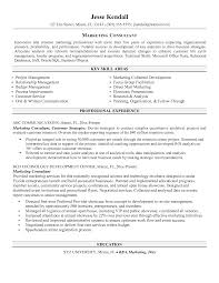 Simple Best Marketing Consultant And Additional Skill Areas Marketing Consultant  Resume Sample