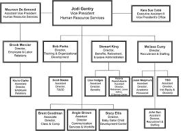 Florida Hospital Organizational Chart Ufhr Organization Chart Uf Human Resources