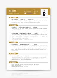 Financial Product Manager Personal Resume Word Template Word