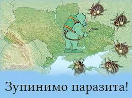 """В Донецке террористы штурмуют санаторий с внутренними войсками: """"Слышны автоматные очереди, у боевиков в руках гранатометы"""" - Цензор.НЕТ 2549"""