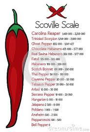 Scoville Pepper Heat Scale Vector Hot Pepper Scoville