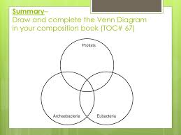Bacteria And Protist Venn Diagram Other Characteristics Ppt Download