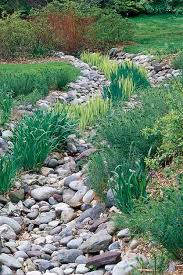 Small Picture How to Design a Rain Garden Garden Design
