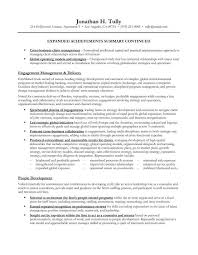 Resume Summary Samples Simple It Resume Summary Examples Radiotodorocktk
