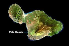 Image result for Polo Beach - Hawaii
