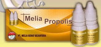 Penyembuhan Hepatitis A - B - C Kronis Dengan Melia Propolis Images?q=tbn:ANd9GcShN-wpo-QkZnFyJzGHPzyRJnRKImboWHLHy_Bc53TLdQSfBkixzA