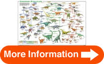 24 X 36 Dinosaur Evolution Educational Science Chart Poster